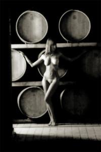 _2934235 bw consueleo winery